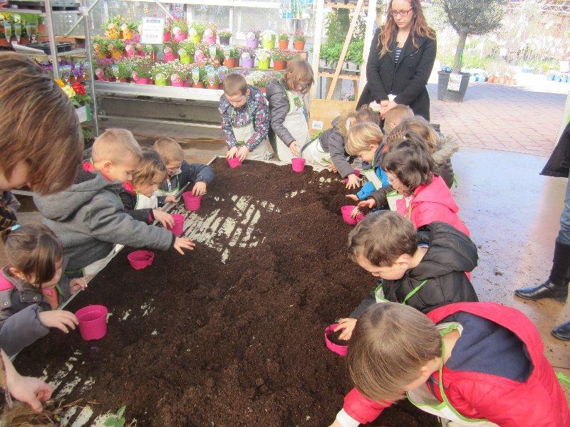 jardinerie-5